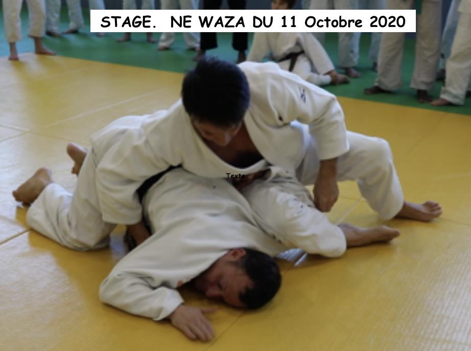 NE_WAZA_11_OCTOBRE_2020